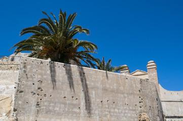 Foto op Canvas Marokko Marocco: le palme e le antiche mura della medina di Tangeri, la città sulla costa del Maghreb all'ingresso occidentale dello stretto di Gibilterra, dove il Mar Mediterraneo incontra l'Oceano Atlantico