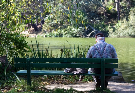 Rear view of elderly man sitting alone on bench in park.