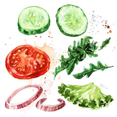 Salad ingredients. Watercolor Illustration.