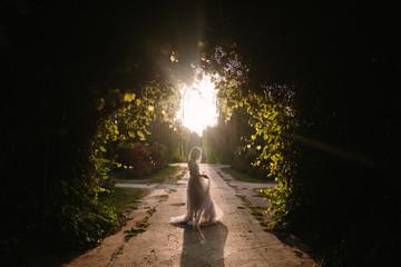 Teenager girl in wedding dress