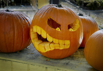 Innovative Scary Freshly Carved Jack-o-lantern for Halloween