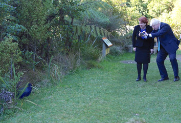 Maggie Barry, New Zealand's Minister of Conservation, stands next to British Foreign Secretary Boris Johnson as he takes a photograph with his phone of a bird during a visit to Zealandia, a wildlife sanctuary area located in Wellington, New Zealand