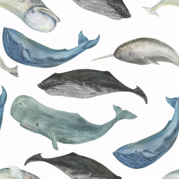 Watercolor painting seamless pattern with whales
