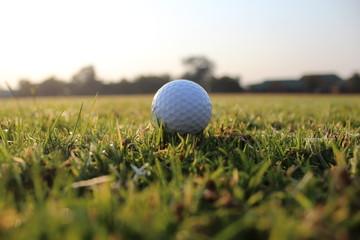 Golf clubs and golf balls: playing golf