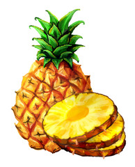 Pineapple illustration of a realistic watercolor. Slices, ananas circles.