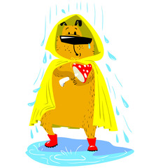 Fall season dog character. Cute pet under the rain with raincoat and boots