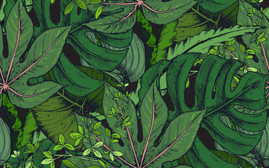 Vector seamless pattern with compositions of hand drawn tropical plants