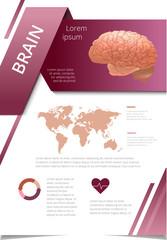 Internal human organs infographic brain