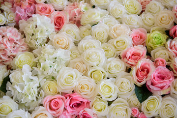 The background of  fabric roses.