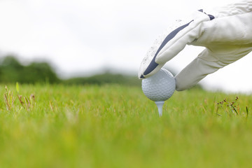 Hand holding golf ball with tee on golf course