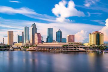 Tampa Florida Skyline Wall mural