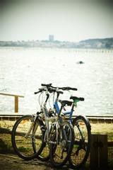 Vélos au Cap ferret