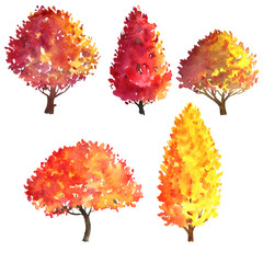 set of autumn trees drawing by watercolor