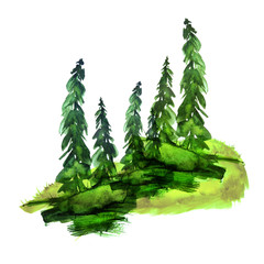 A group of watercolor conifers - pine, spruce, fir, cedar. Silhouettes of forests, summer countryside green landscape. Postcard, card, logo. Drawing on white isolated background.