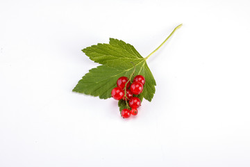 Ripe red currant isolated on white
