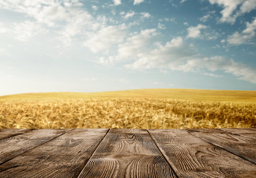 Close up of old empty wooden table over wheat field with copy space