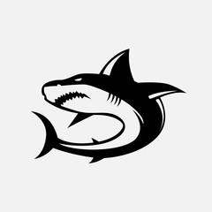 Shark illustration. Shark isolated on background. Vector stock.