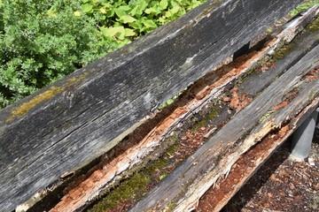 morsche und verrottete Holzbank