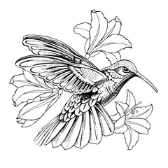 Hummingbird in flight with flowers. Vector illustration.
