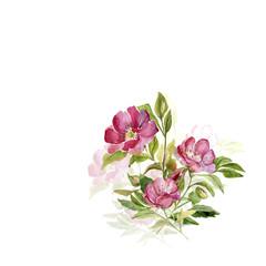 Flowering branch of rose hips