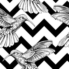 Seamless pattern with image of a Hummingbird on a geometric background. Vector illustration.