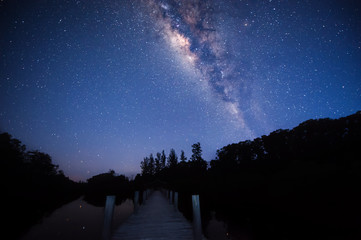 Starry night with milkyway. ( Image contain visible noise due to High Iso. soft focus due to long expose)