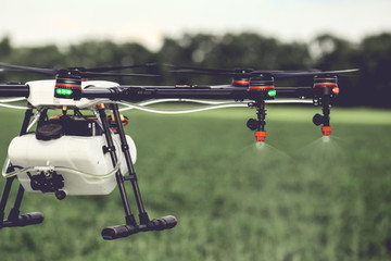 Closeup view of agriculture drone spraying water fertilizer on the green field. Drones spraying pesticides to grow potatoes.
