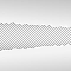 Ragged paper vector illustration on transparent background