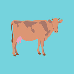Vector illustration in flat style cow