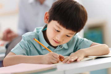 School boy studying in classroom
