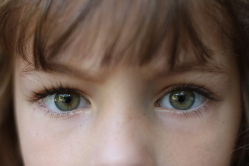 Close up of a young brown haired girl with piercing green eyes