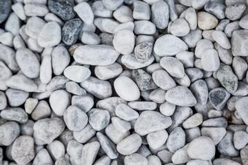 stone texture background. White pebbles wallpaper