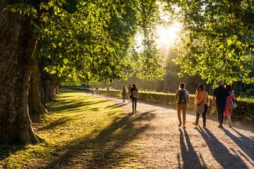 Spaziergänger im Park in der Abendsonne