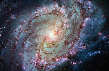Photo sur Toile Les Textures Messier 83, Southern Pinwheel Galaxy, M83 in the constellation Hydra.