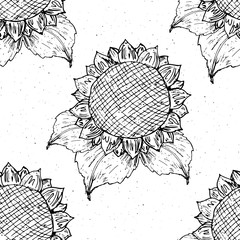 Sunflower seamless pattern hand drawn sketch, background, typography design vector illustration