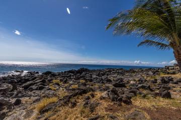 Peaceful Ocean View