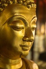 Faith of Golden Buddha (Ancient)