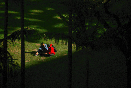 Two people talk as they sit in a patch of sunlight that is shining onto a section of grass in a park on a sunny, winter day in central Sydney, Australia