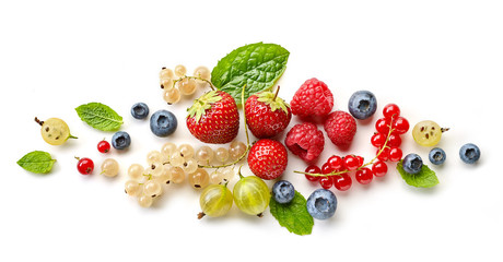 composition of various berries