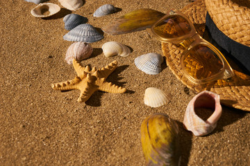 Straw hat and sun glasses on the tropical sandy beach with many little seashells.