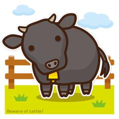 牛のいる牧場 黒毛和牛