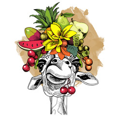 Giraffe portrait with a Fruits Headband and with cherry. Vector illustration.