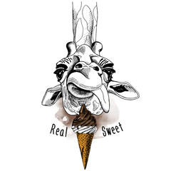 Giraffe portrait with a ice cream. Vector illustration.