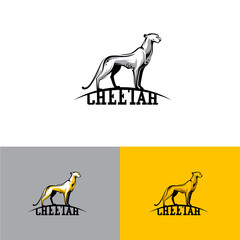 Logo cheetah. Vector illustration EPS10