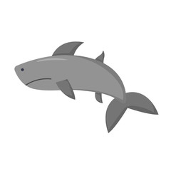 Vector cartoon isolated shark