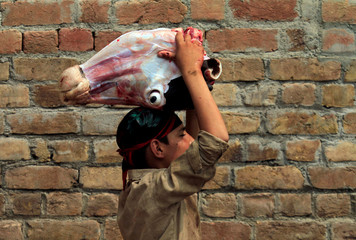 A worker carries a cow's head at a slaughterhouse in Peshawar