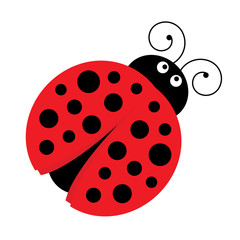 Vector Cute Cartoon Ladybug