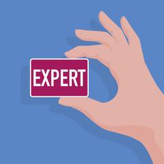 expert - comptable - expertise - présentation - carte de visite, main