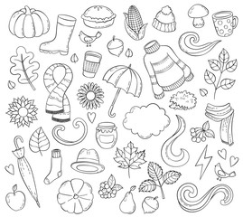 Set autumn hand drawn doodle illustrations. Background, template, backdrop, wallpaper, Icon collection, Freehand sketch for adult anti stress coloring book page