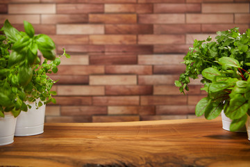 Fresh organic green wooden background
